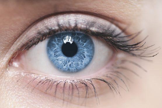 Кратко описание на частите на окото за пациенти